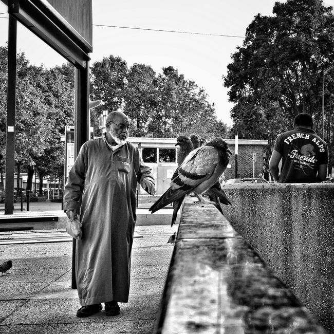 The man who talk to birds People And Places Street Photography Streetphotography City Life Outdoors City Lifestyles People Photography Peoplephotography