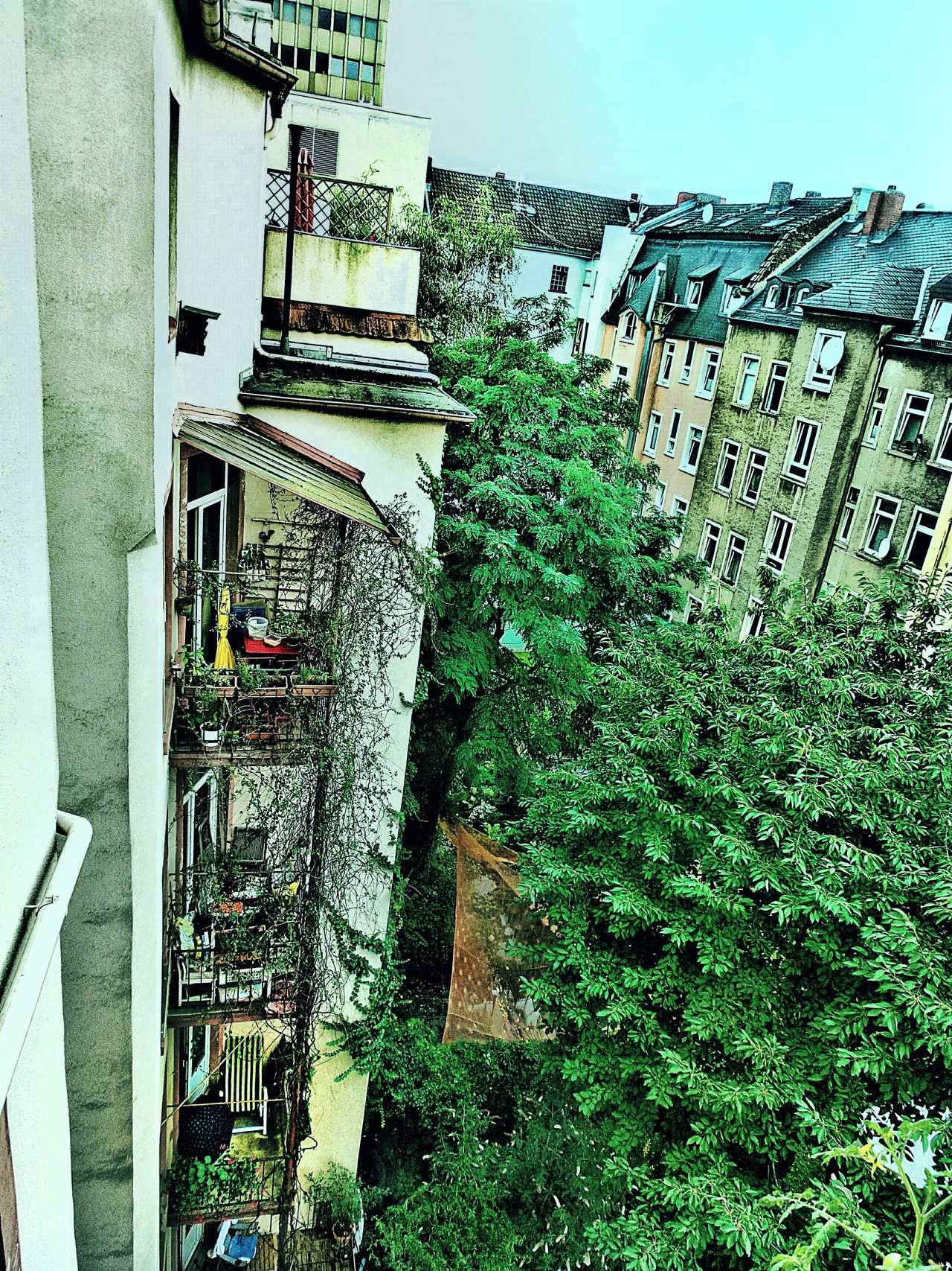 Idyllic Backyard Green Island In The City Urban Architecture Urban Lifestyle Cosy Balconies In The Foreground Green Plants Hidden Gems  Frankfurt City  Germany🇩🇪 Home Is Where The Art Is Hidden Gem