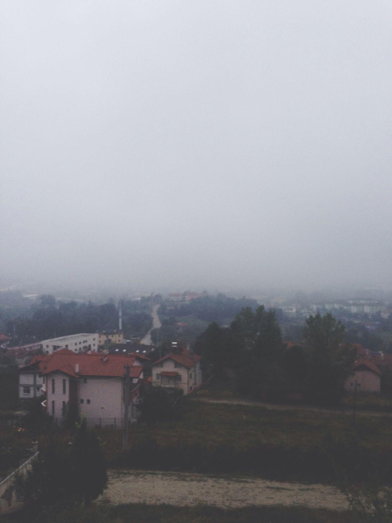 Düzce Manzara