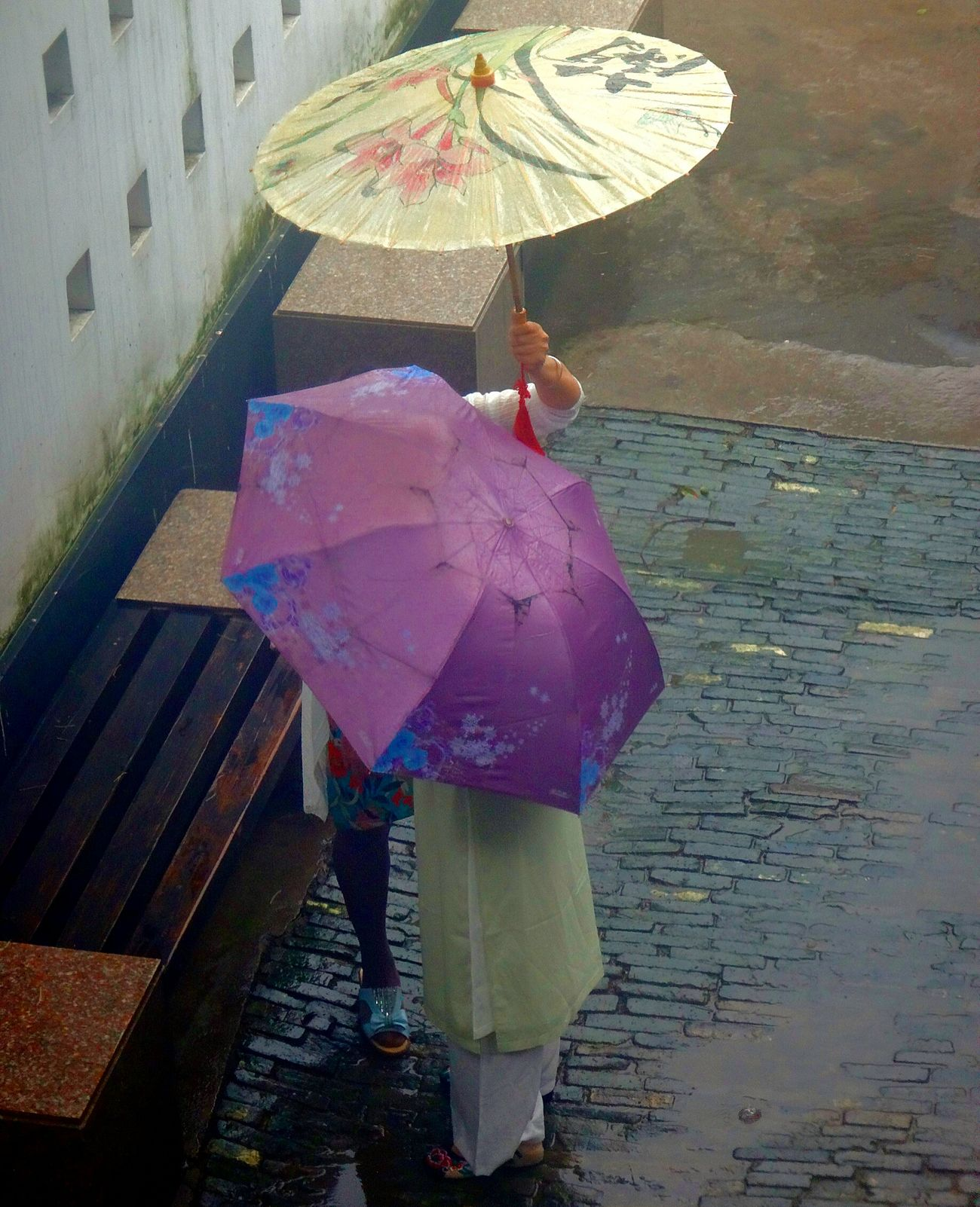 Rain Protection Rainy Season Wet Only Women People Outdoors Water Lifestyles Women Tongli China China Photos China In My Eyes China Culture