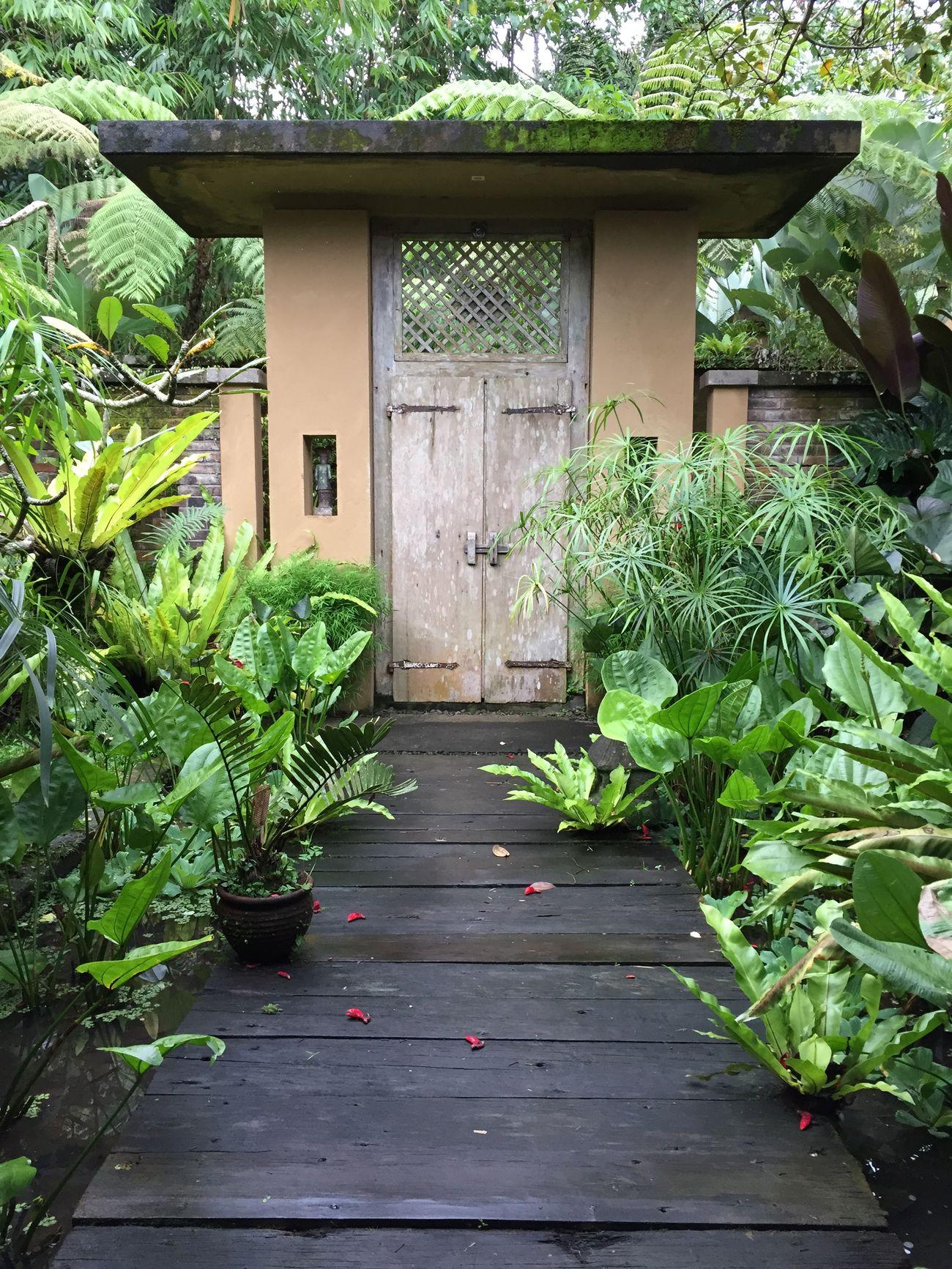 Nature On Your Doorstep Balinese Garden, Bali