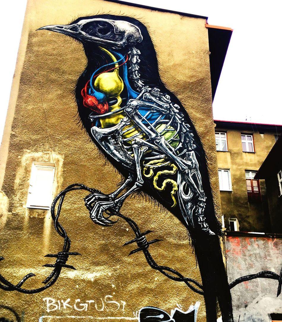 Graffiti Graffiti Art Grafitti Block Of Flats City Wall Wall Art Katowice Poland Bird Mural Mural Art Anatomy Anatomyhumor
