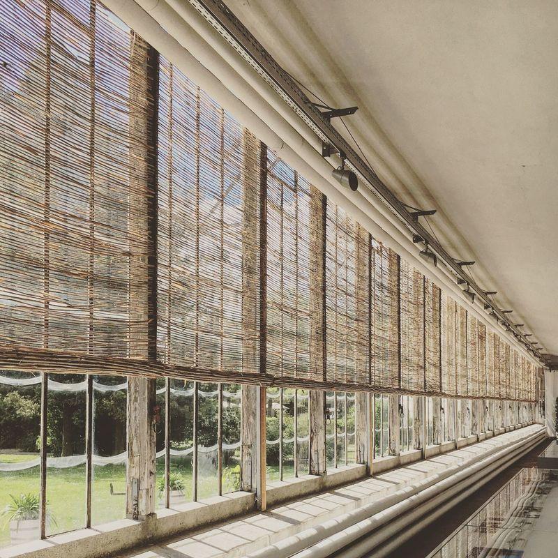 Indoors  No People Day Architecture Palmenhaus Nymphenburg Munich Bavaria Interior Views