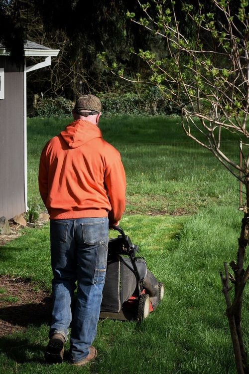 Rear View Tree Full Length One Person Holding Standing Adults Only Senior Adult Outdoors Men One Man Only Grass Adult Day People Only Men Lifestyles Springtime Work Outdoor Photography Mowing The Lawn Yard Work Outside Outdoor Grass