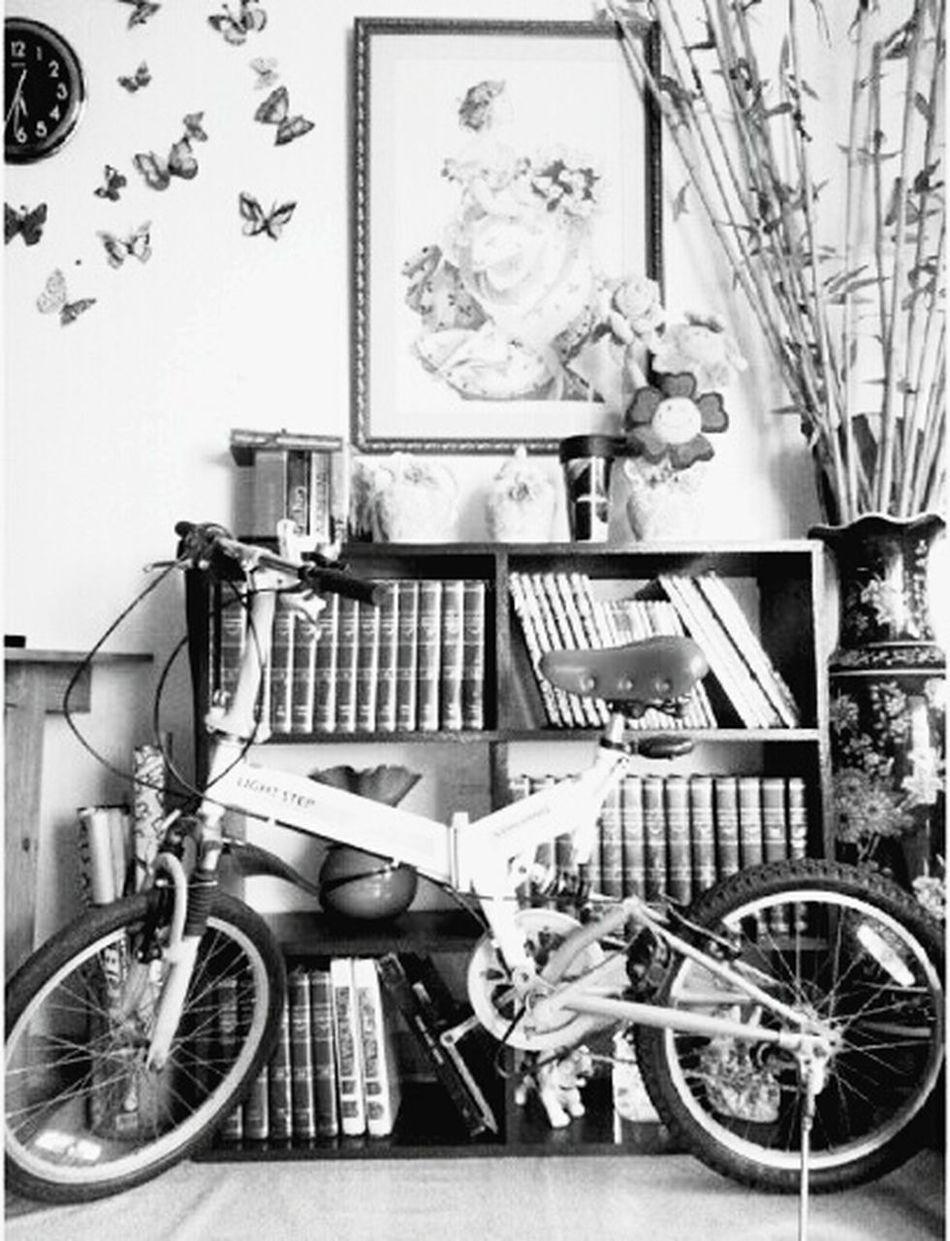 On Your Bike Shock Bicycle Mylove Japanesebike Foldable Foldable Bike Foldingbike Folding Shades Of Grey