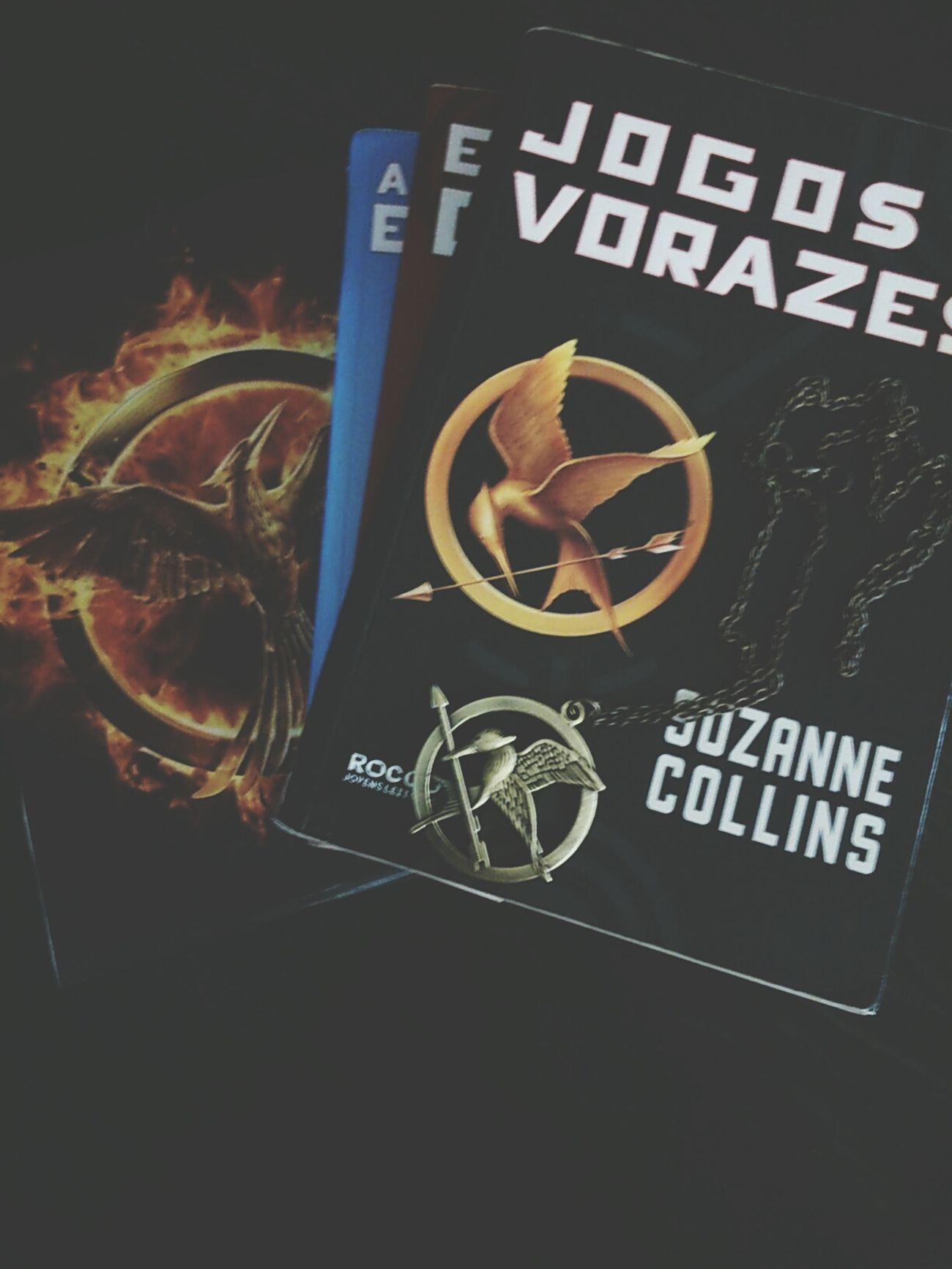 JogosVorazes Thehungergames Books