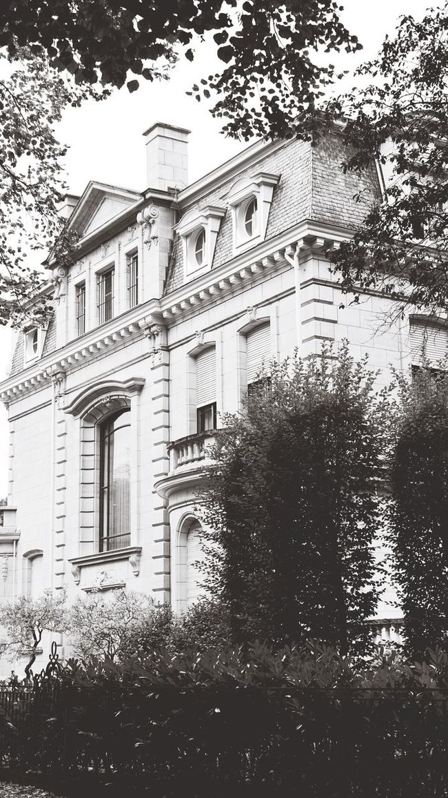 Building Exterior Tree Architecture Built Structure Outdoors Growth No People Day Sky Nature Facade Building Façade Old House Black And White Black & White Black And White Photography Vintage House Landscape House In Nature House In The Forest Architecture Photography Architecture : Victorian SONY A7ii
