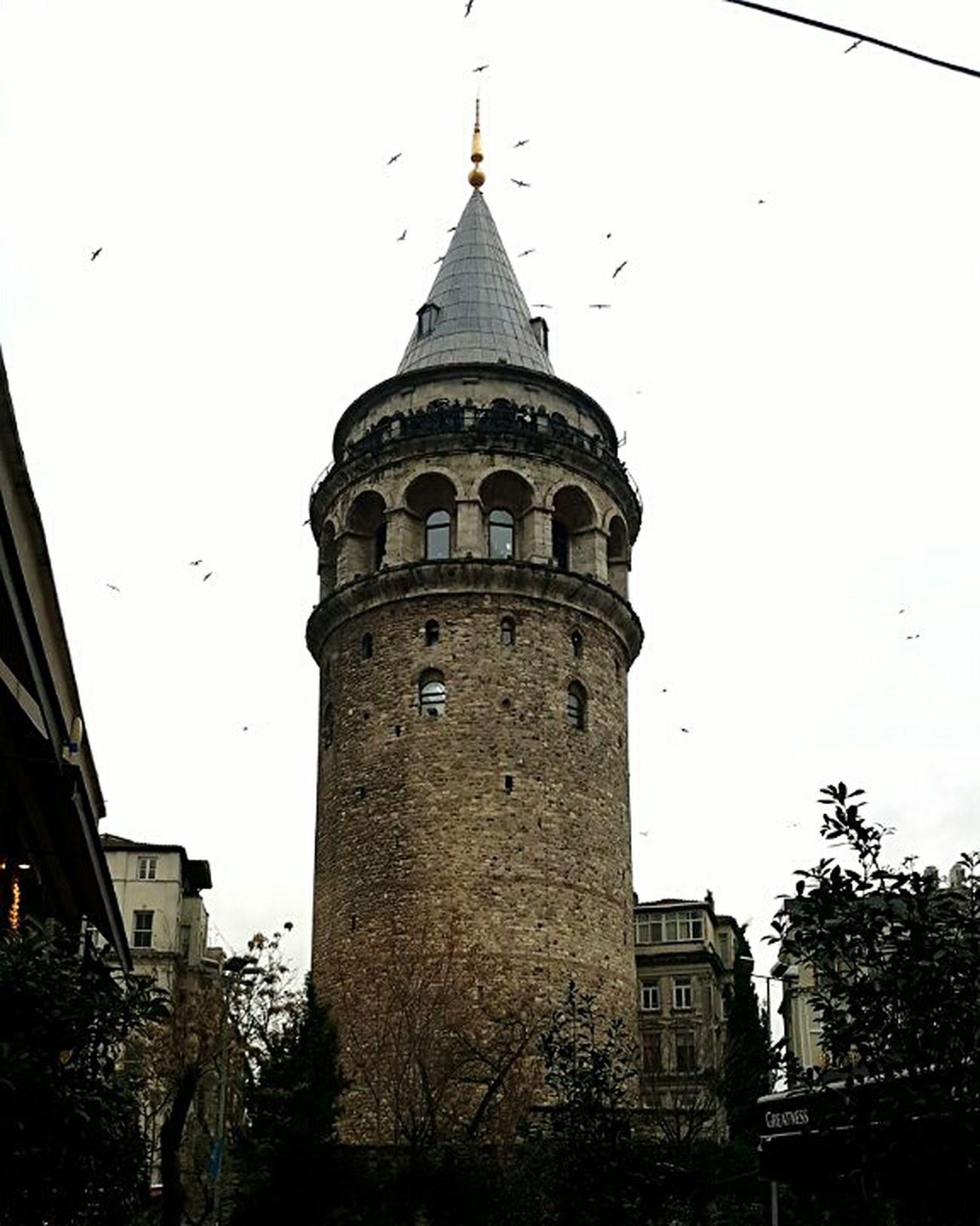 Стамбул мойСтамбул встречасмоимСтамбулом галатскаябашня декабрь2014