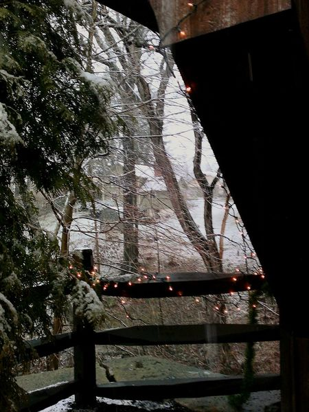 View From Covered Bridge Architecture Cold Temperature Eyem Gallery Irwin Collection Outdoors Photograpghy  Christmas Time Snowyday Christmas Lights!  Tree Covered Bridge Weather Bridge - Man Made Structure No People Snowing Close-up Home Sweet Home ❤ Olmsted Falls Ohio, USA Shades Of Winter