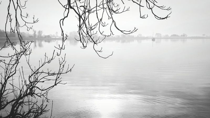 Lake In The Forest Myst Fog Foggy Foggy Morning Boat View Morning Horizon Over Water Water Trees Blackandwhite Black And White Black & White B&w Emptyness Lonliness Sorrow Rêverie Sobieszewo Monochrome Photography Finding New Frontiers