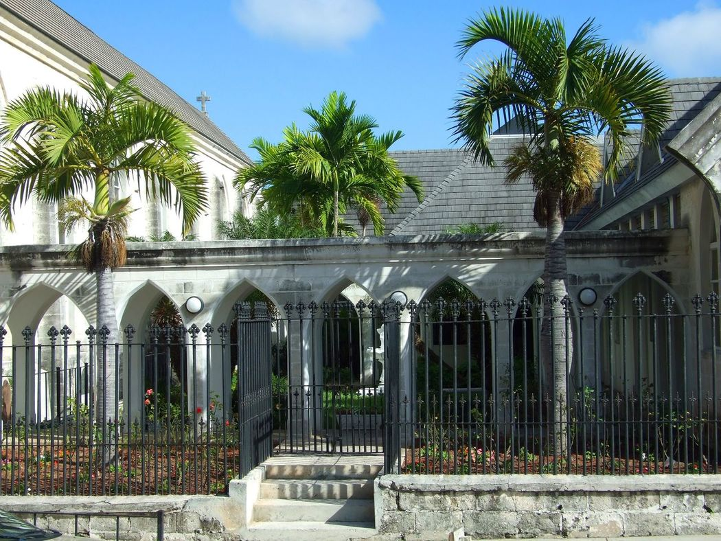 Architecture Building Exterior Built Structure Cloisters  Day Gothic Arches Gothic Architecture Gothic Style Growth No People Outdoors Palm Tree Plant Sky Tree