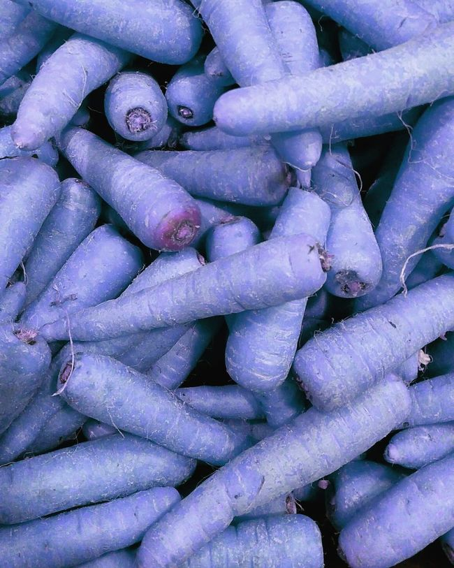 Showcase March Blue Carrots