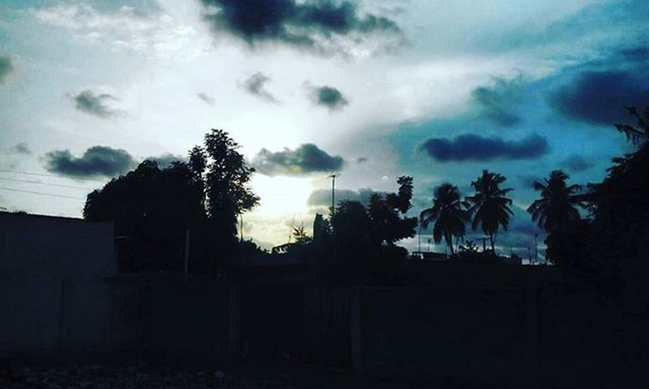 Somewhere in Togo Photowalk by @ohaniceyt Team228 Afrigraphy AfricaPhotography Photography PhotoWalkTg Evening Biodiversity Nature Sunset Picofday Opengraphy OpenPhotograpy Africa WestAfrica Togo Sun Cloud
