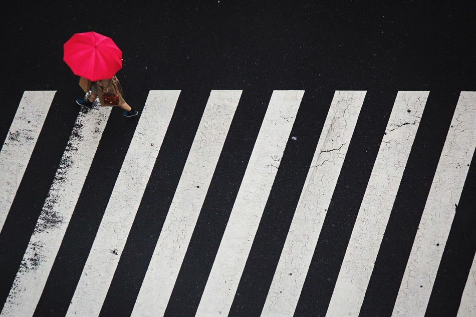 Beautiful stock photos of rain, Black Color, Crosswalk, Day, High Angle View