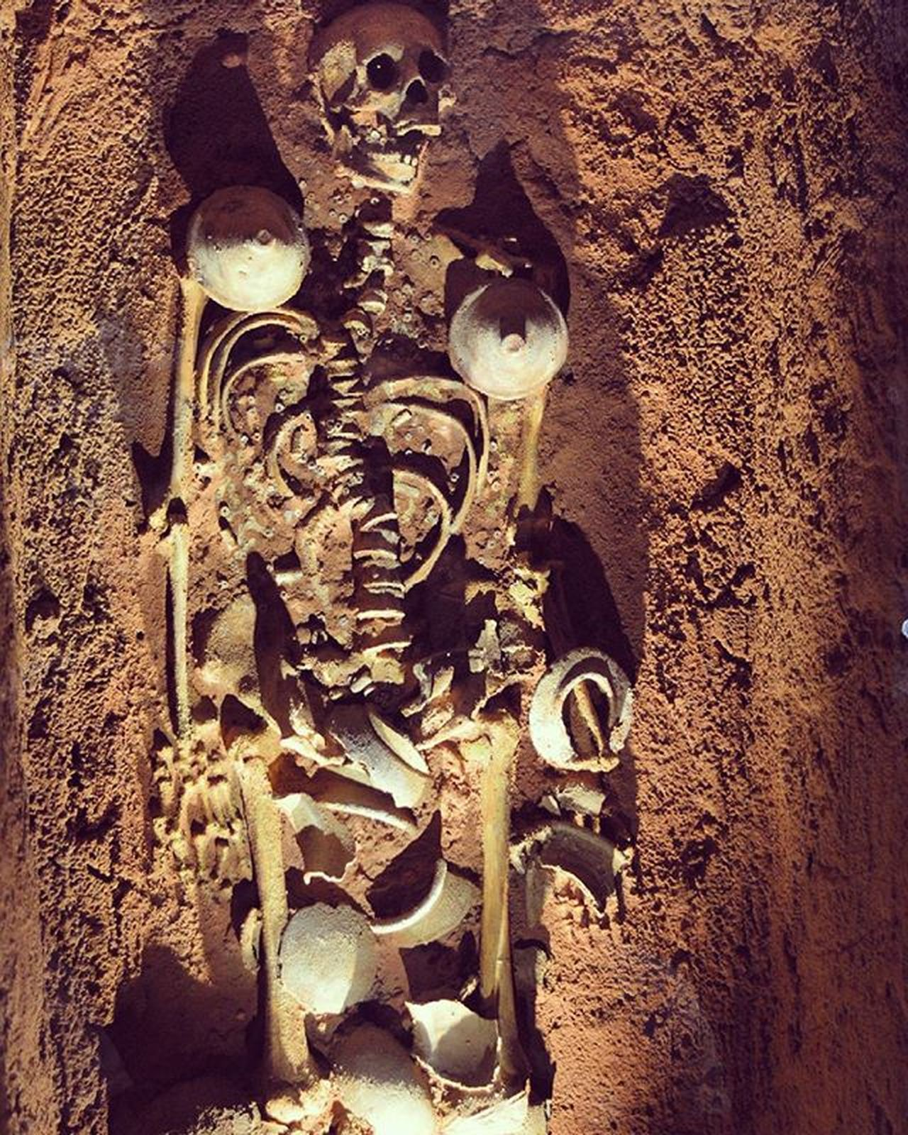 Skeleton Bone  Bones Scary Halloween Hountedhouse Hounted Ghost Ghosts Art ArtWork Museum Museums Human Humans Skull Skulls Cave Old Olddays Man