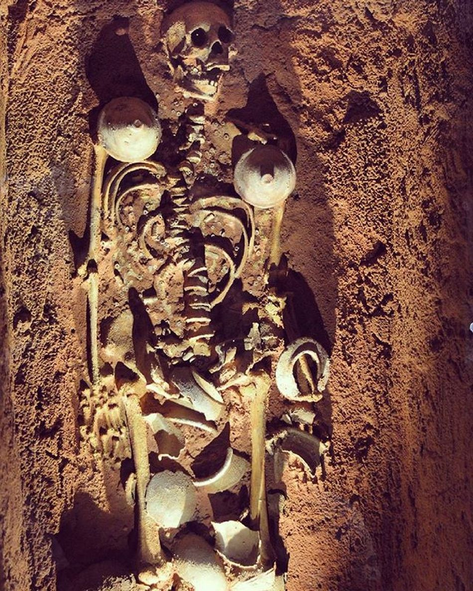 Skeleton Bone  Bones Scary Halloween Hountedhouse Hounted Ghost Ghosts Art ArtWork Museum Museums Human Humans Skull Skulls Cave Old Olddays Man
