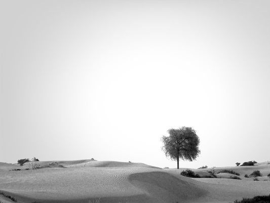 blackandwhite in Dubai by egosdr_etc.