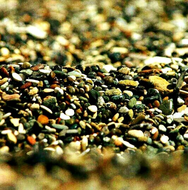 Ocean Beach Macro Ocean Interesting Pea Depth Of Field Beauty Color Pebbles On A Beach Patterns Water Sand Pebbles Beach Focus Open Apature