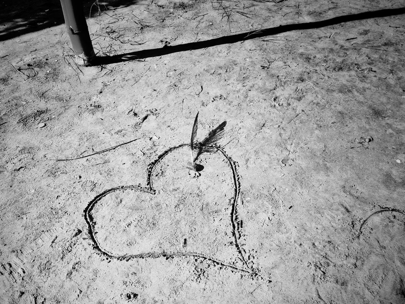 Just A Feeling High Angle View No People Day Close-up Nature Outdoors Good Times Lifestyles Full Frame Beach Sand Heart Shape Love Drawn Drawing Sand Drawing The Week On Eyem