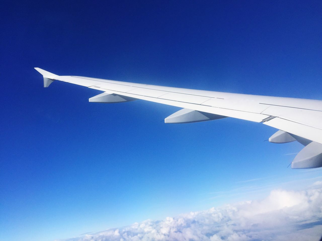 Airplane Clear Sky Flying Travel Sky Blue Transportation Transportation Low Angle View Journey Air Vehicle Mid-air Aircraft Wing Airplane Wing Outdoors Nature Clouds And Sky Sunshine View Sun Flying High Fly Travel Scenics Beauty In Nature