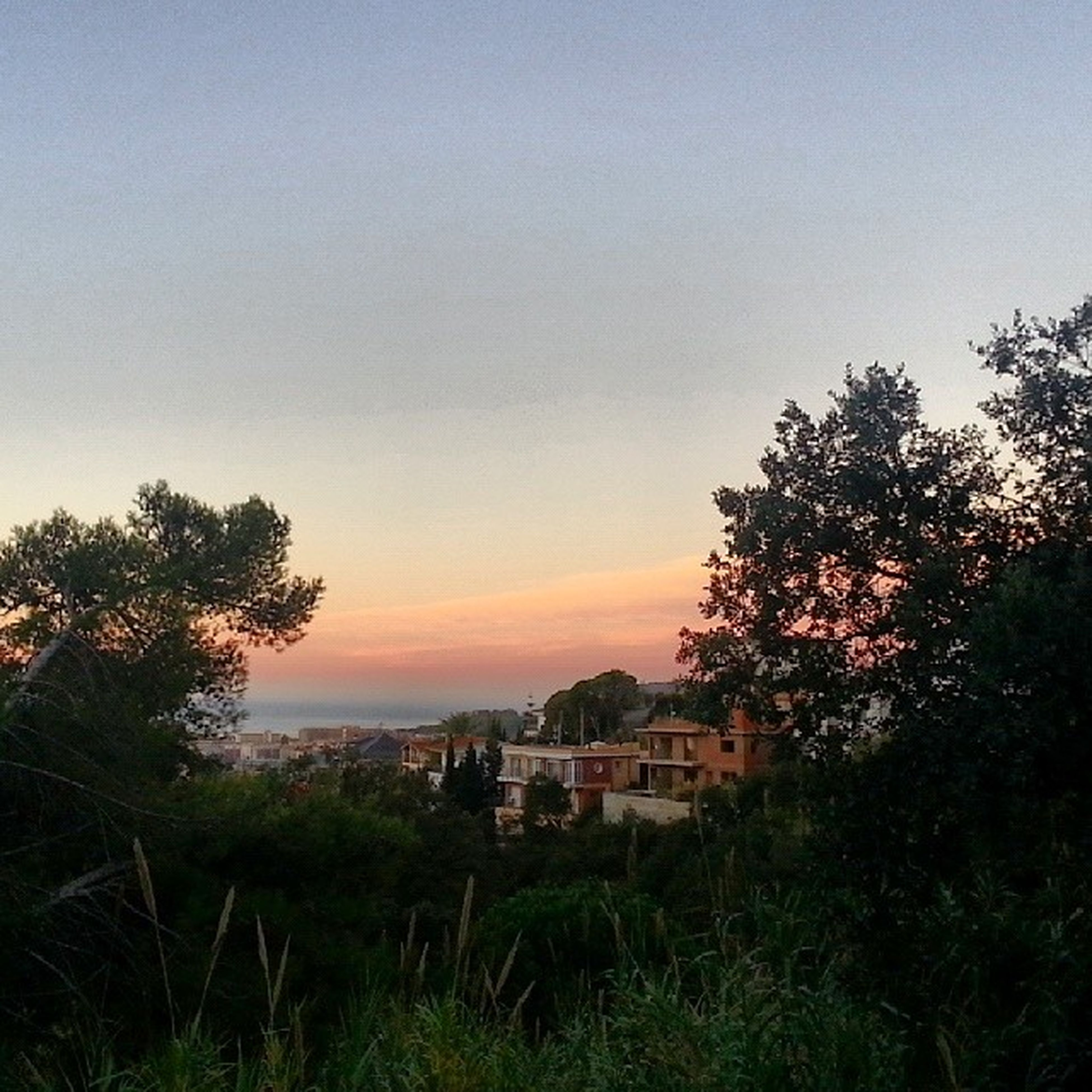 building exterior, sunset, tree, architecture, built structure, copy space, house, clear sky, sky, beauty in nature, growth, nature, scenics, tranquil scene, tranquility, orange color, residential structure, landscape, plant, outdoors