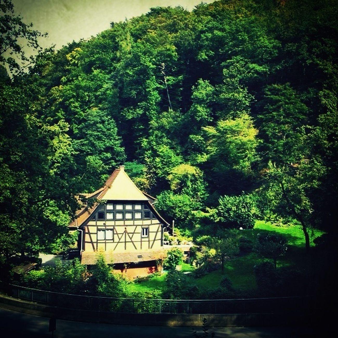 Forest Fachwerk Hexenhäuschen Houses