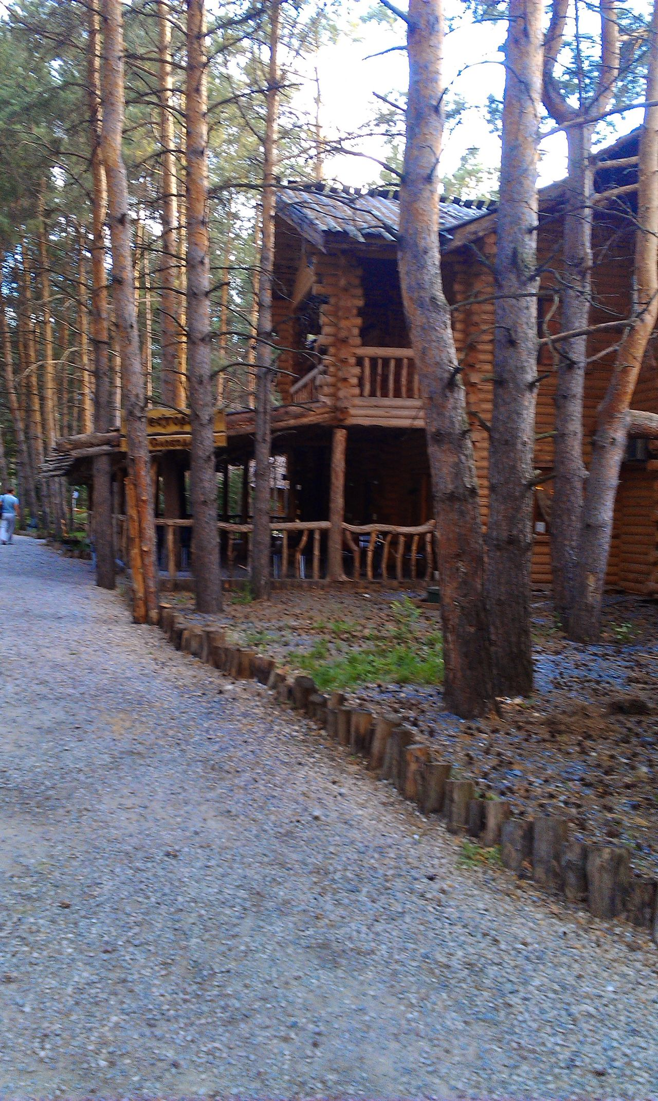 изба Лес Nature свежийвоздух дом лето
