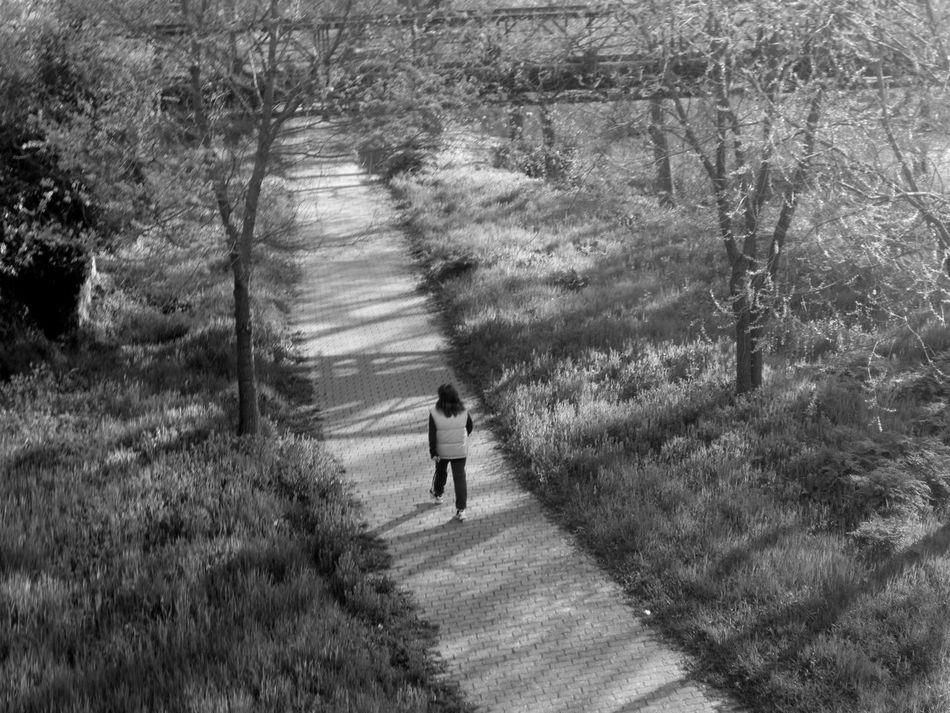 #basilicata #Black&White #blackandwhite #fotobianconero #fotobianconero #bianco&nero #passeggiata #potenza #streetphotography #sun #urban #vialedelbasento