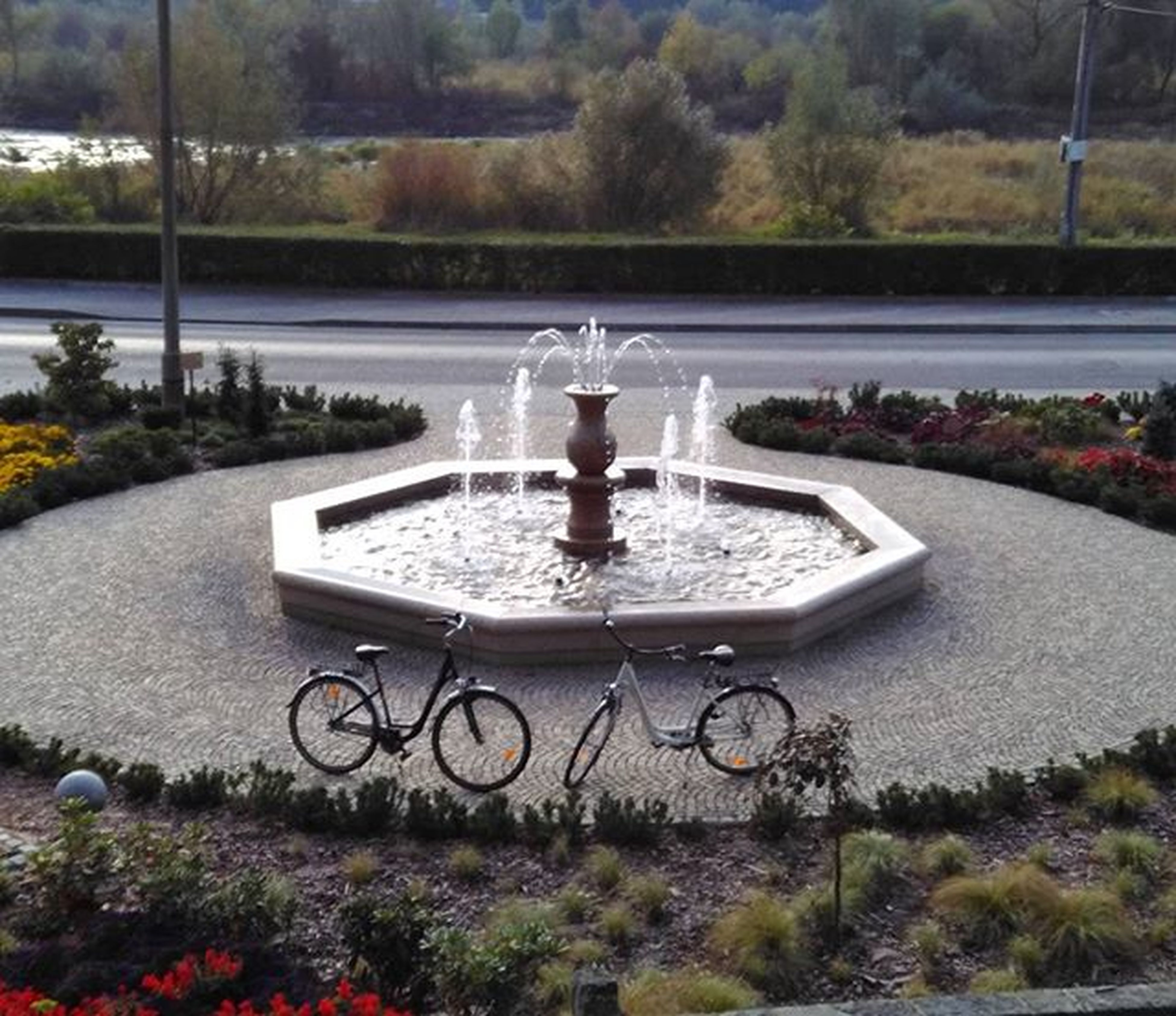 bicycle, tree, transportation, mode of transport, land vehicle, park - man made space, street, water, flower, road, growth, plant, day, nature, outdoors, grass, footpath, fountain