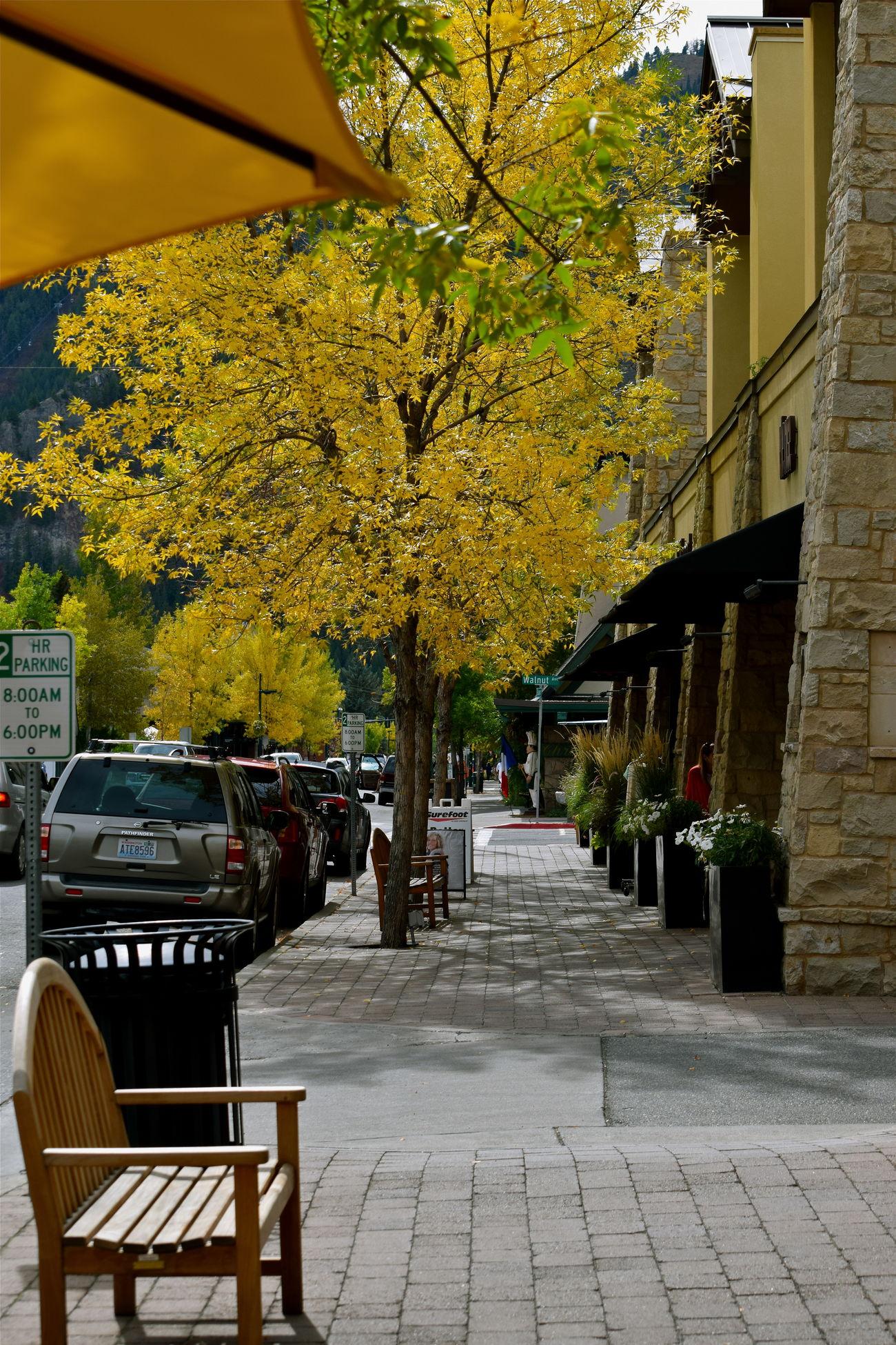 Sun Valley Sun Valley Idaho Idaho 43 Golden Moments