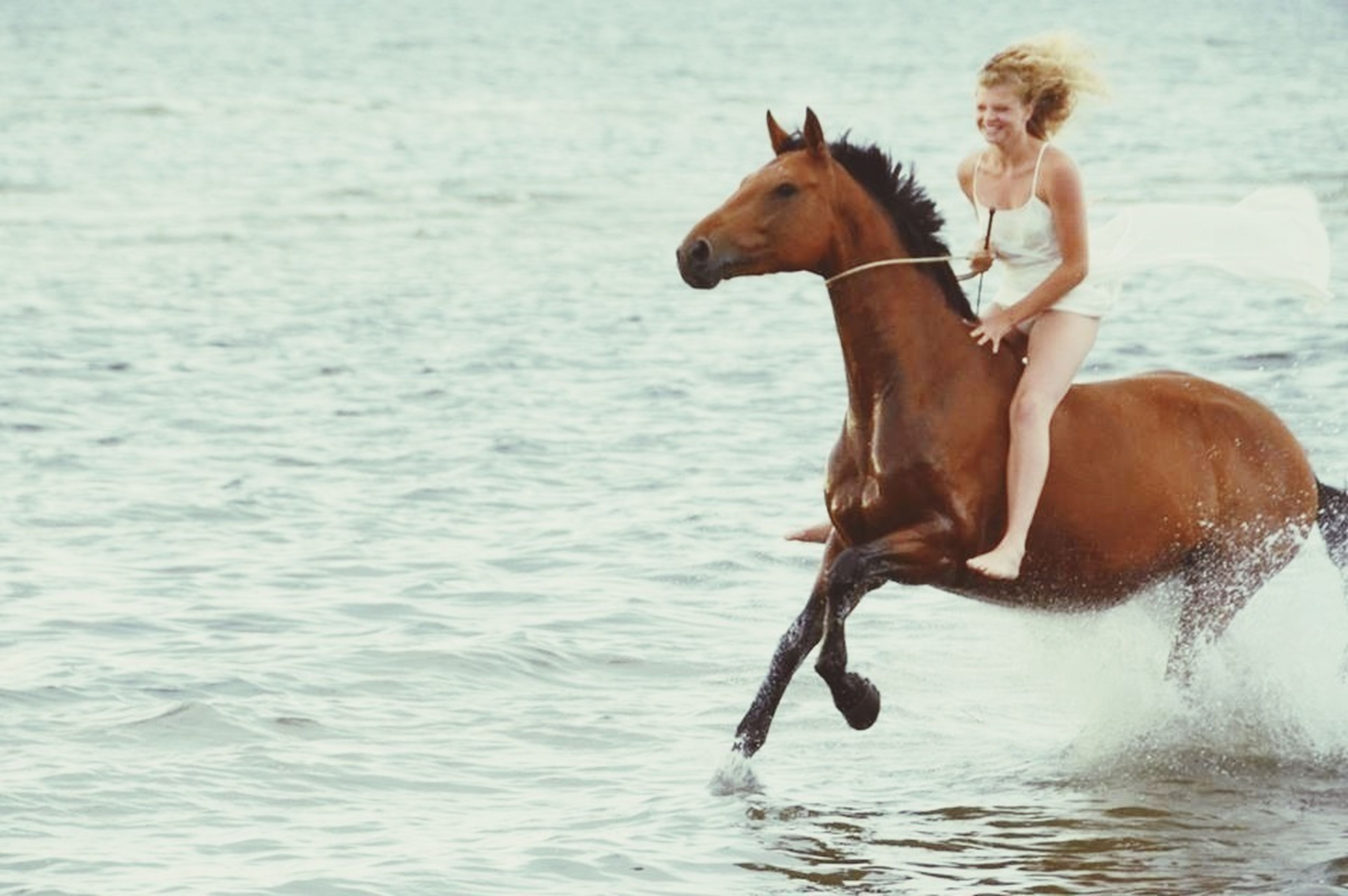 water, animal themes, domestic animals, mammal, sea, one animal, waterfront, full length, dog, leisure activity, lifestyles, motion, pets, jumping, running, horse, side view, shirtless