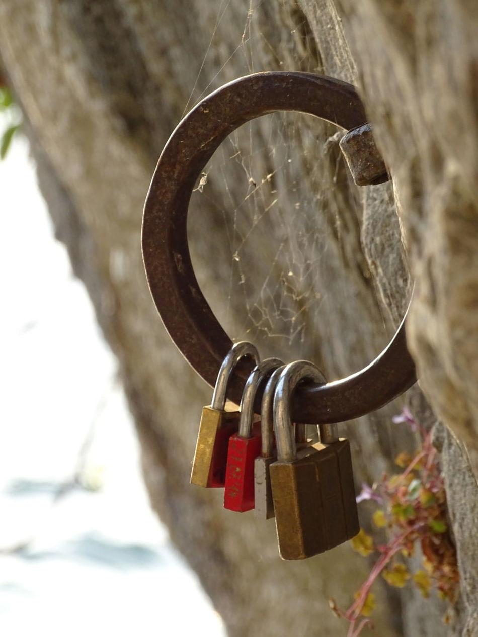 Padlock Metal Love Lock Love Hope - Concept Luck Romantic Love Love ♥