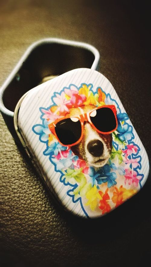 Trinket box Multi Colored No People Dogs Box Jewelery Box Trinkets Novelty Cartoon Tin Urban Grafiti Art Summer Sunglasses Kitch Cool Hipster Style HuaweiP9 EyeEmNewHere Close-up Textures And Patterns Splash Of Color Blue Flowers Leiblingsteil Kleinanzeigen