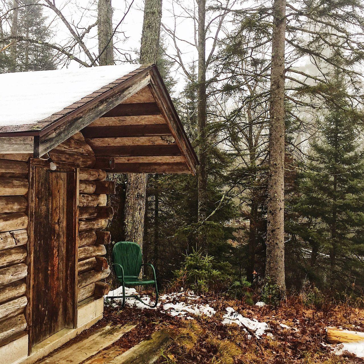 Camp sauna Outdoors Tree Nature Taking Photos Nature On Your Doorstep Iphonography Sauna