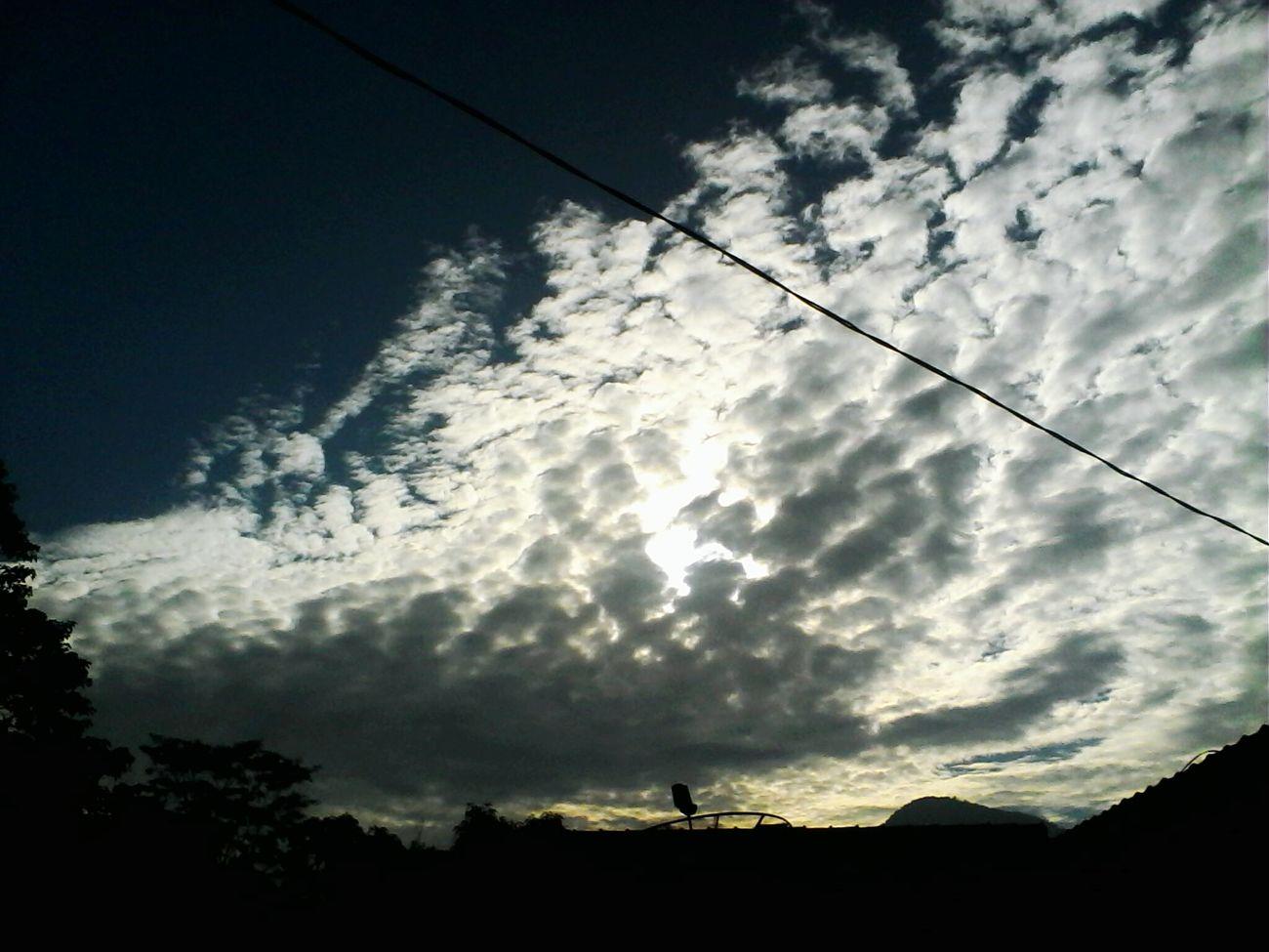 Good Morning Beautiful Nature