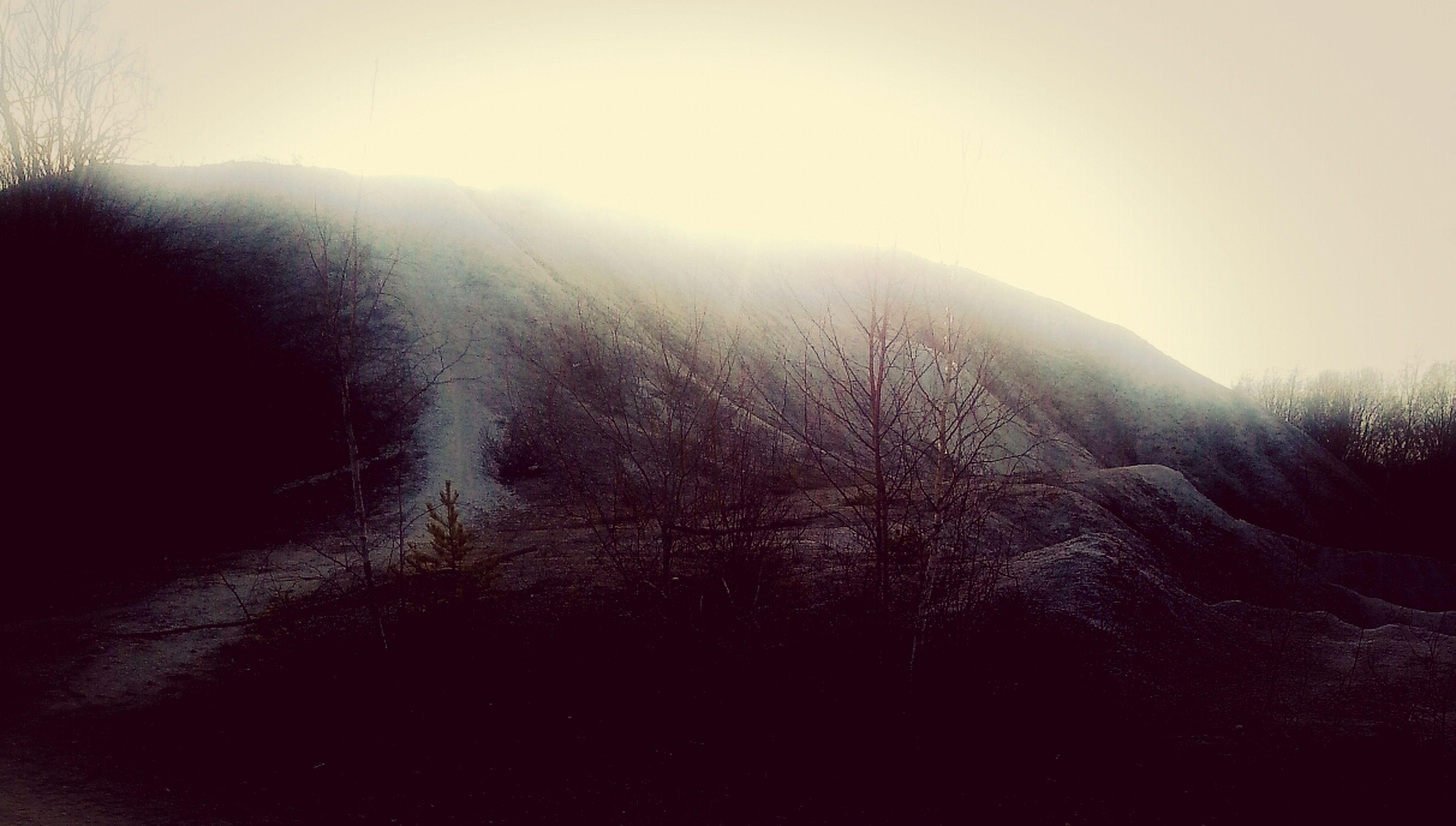 tranquility, clear sky, tranquil scene, sun, scenics, landscape, beauty in nature, nature, mountain, sunlight, sunbeam, copy space, tree, sky, non-urban scene, lens flare, silhouette, bare tree, field