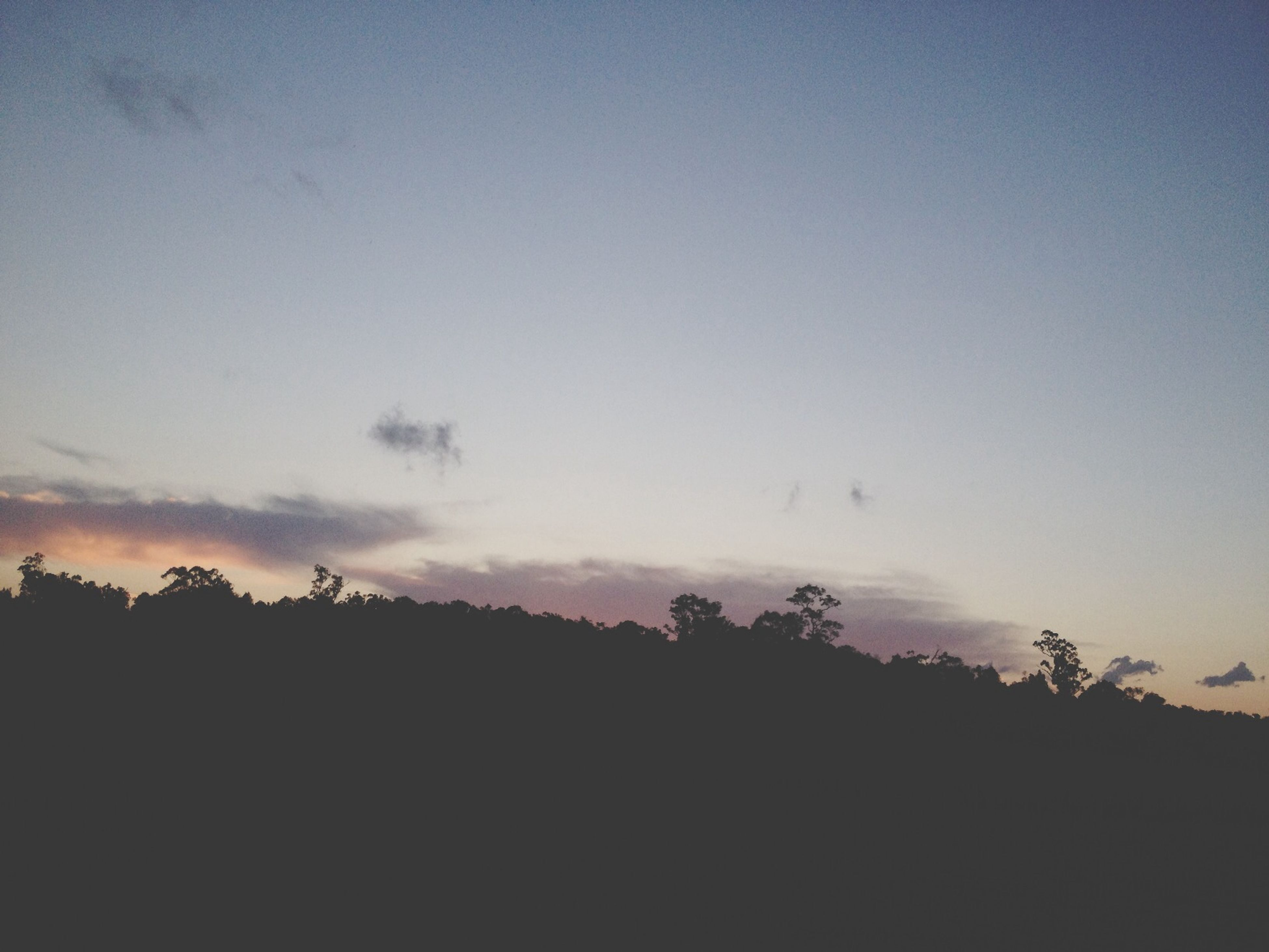 silhouette, tranquil scene, tranquility, scenics, sky, beauty in nature, tree, sunset, nature, copy space, landscape, idyllic, dusk, non-urban scene, outdoors, no people, cloud - sky, non urban scene, low angle view, remote