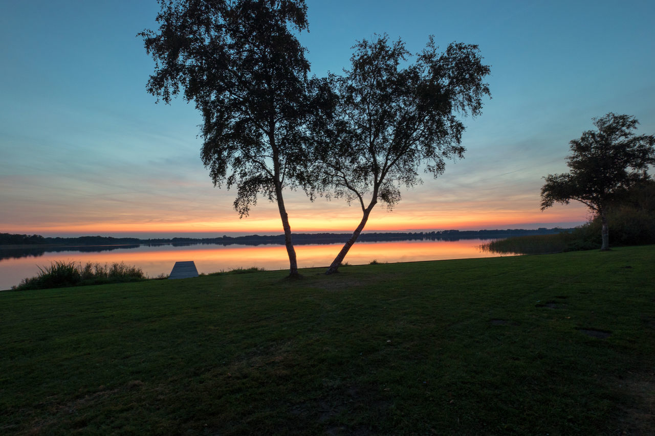 tree, sunset, nature, beauty in nature, tranquil scene, grass, scenics, tranquility, orange color, sky, landscape, outdoors, no people, field, water, growth, sea, day
