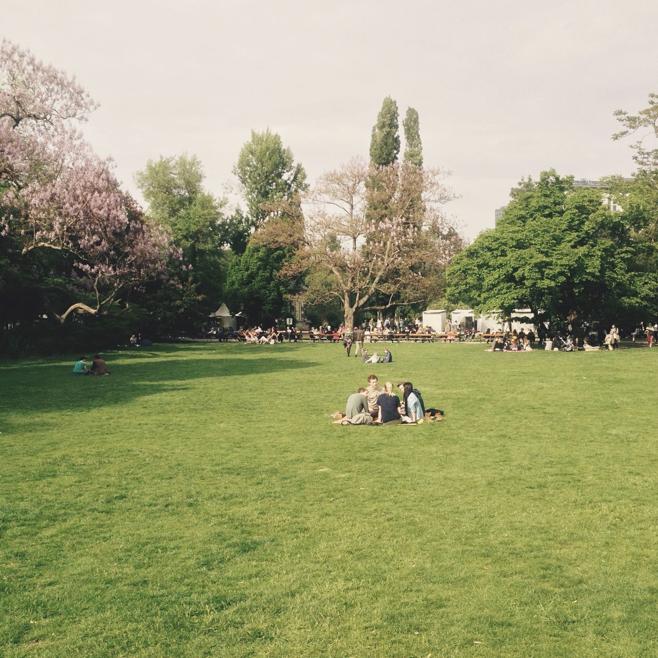 View Of People Sitting In Park