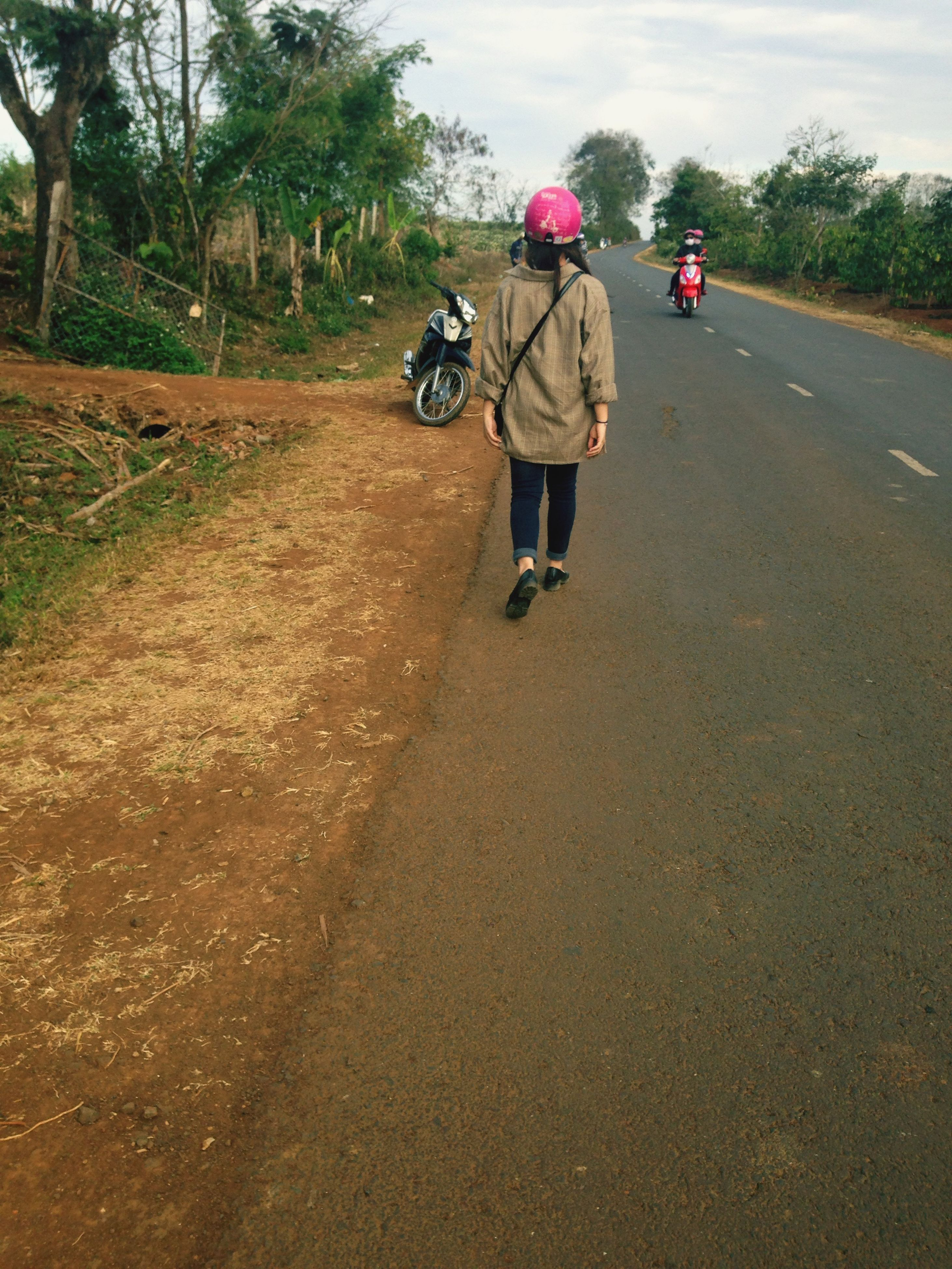 full length, the way forward, rear view, walking, road, lifestyles, tree, transportation, leisure activity, men, street, dirt road, casual clothing, riding, bicycle, childhood, cycling