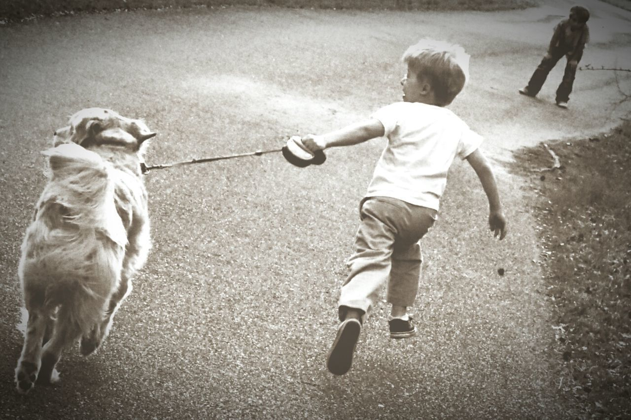 One Animal Pets Dog Animal Themes Domestic Animals Full Length Outdoors Care Childhood Two People Rear View Friendship Day Bonding People Mammal Mans Best Friend Dogwalking Running Dog Running Laughter Love Bondingmoments Childsplay Outside