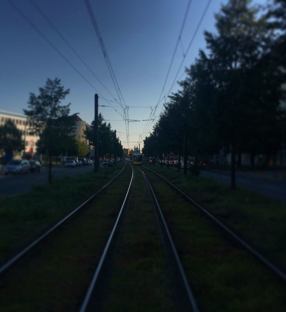 Tree Railroad Track Transportation Rail Transportation Dusk Clear Sky Diminishing Perspective Tram Tramtrack Diminishing Perspective Leading Lines Berlin Prenzlauerberg Railway Track Vanishing Point Train Track Day Growth Outdoors Nature Sky Track Long Tranquil Scene Straight
