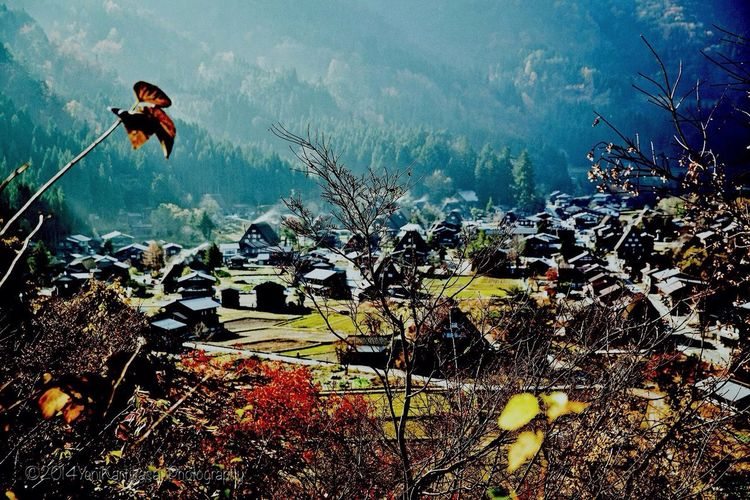 Belong Anywhere Gokoyama Village Shirakawago Japan