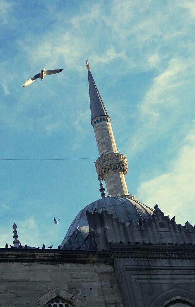 Istanbuldayasam Blue Maviiii 😍😍😍❤💙❤💙❤💙 Hava Cok Güzel Camii Minare Uçmak Colorphotography Autumn Colors Huzur 💕 Istanbul City Sabahsabah