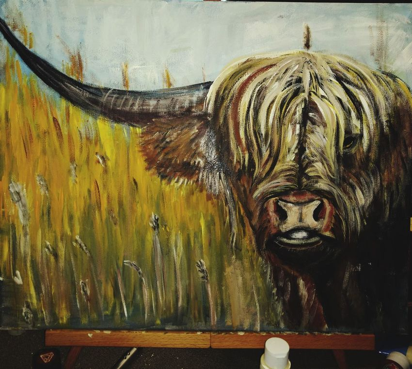 Art And Craft Paint The Town Yellow Cows Head LONGHORN IN PASTURE My Artwork