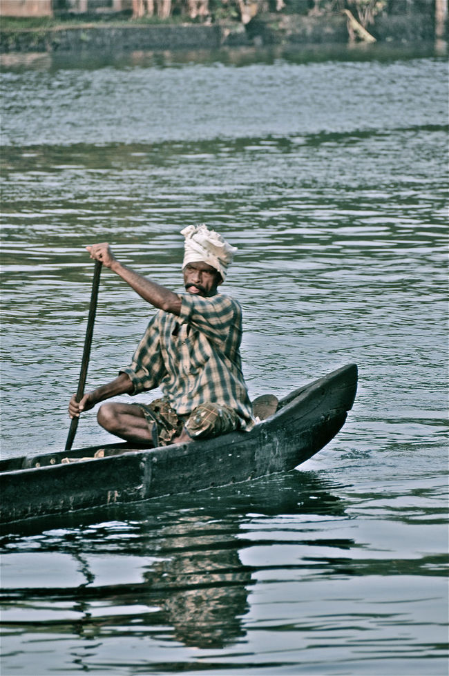 Backwaters Fisherman India Indian Man Kerala Paddling