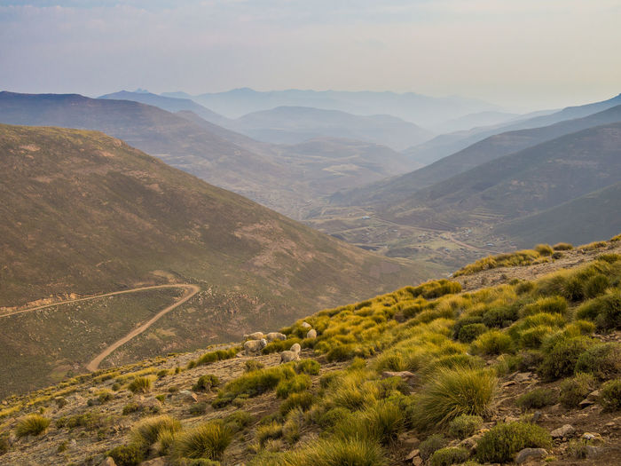 Africa Mountain Pass Mountain Range Mountain Pass Lesotho Road Curvy Offroad