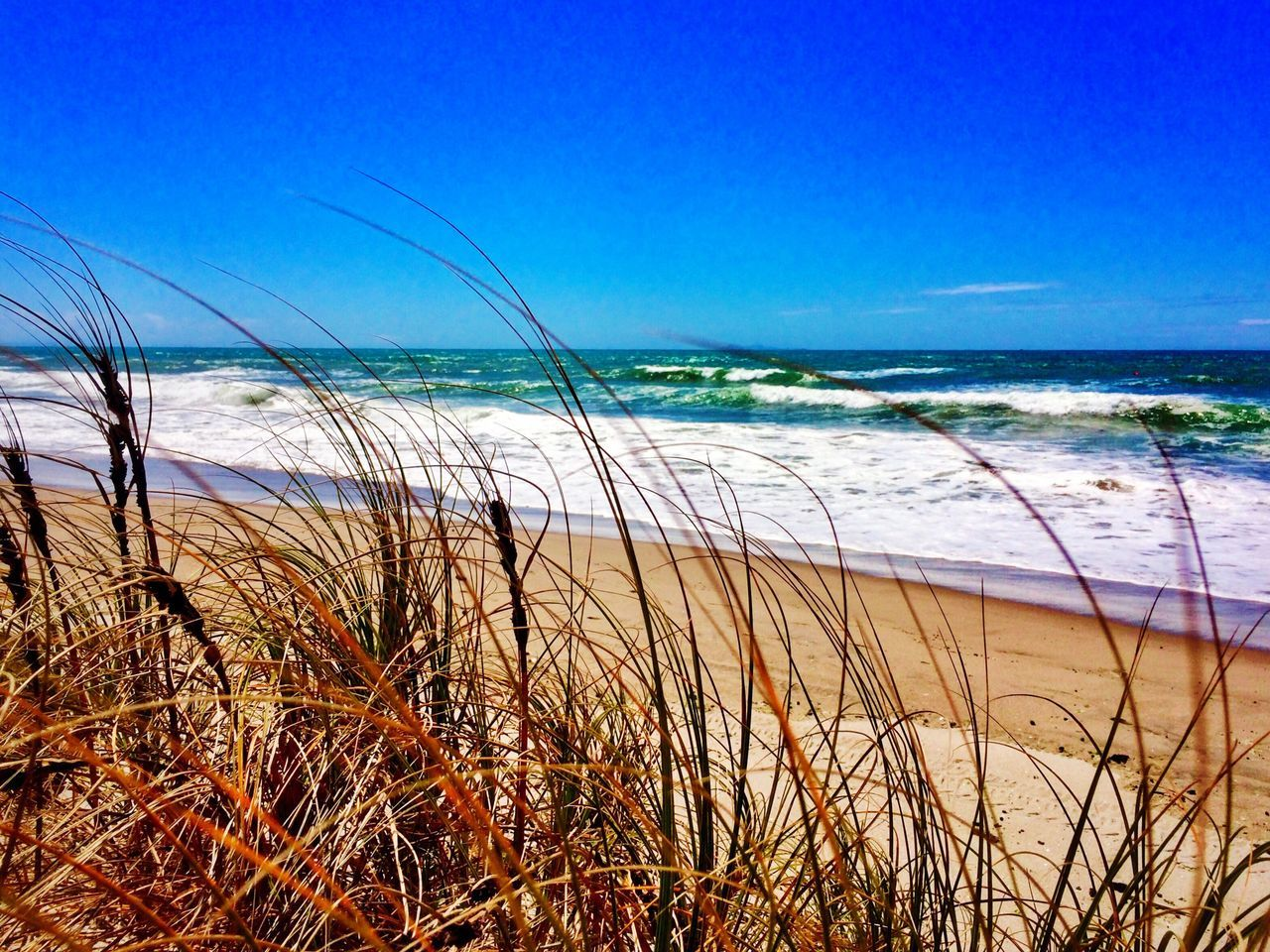 sea, water, beach, nature, tranquil scene, beauty in nature, scenics, tranquility, sand, horizon over water, marram grass, grass, outdoors, blue, sky, no people, day, plant, growth, travel destinations, vacations, wave