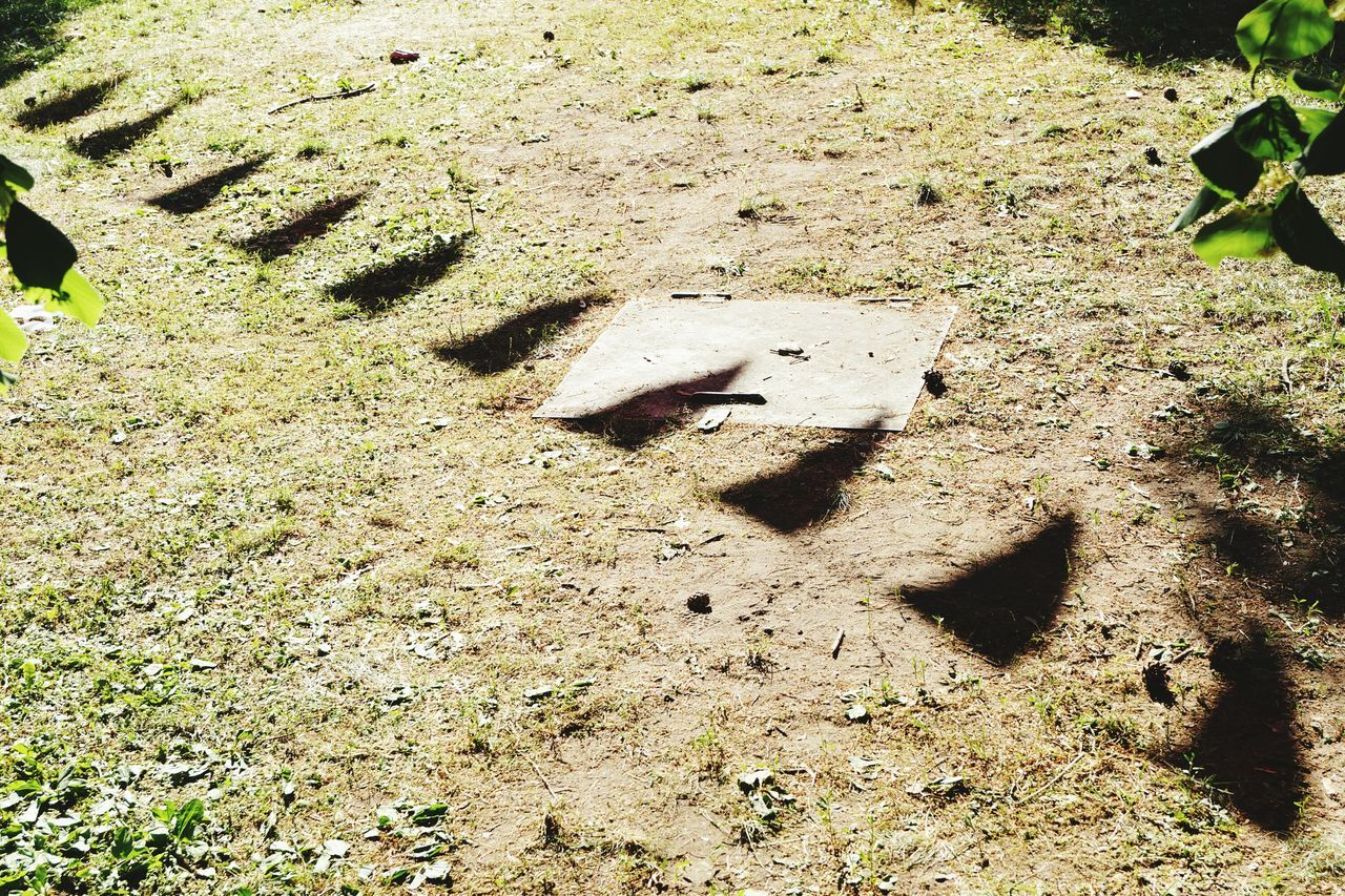 Sand Sunlight Shadow High Angle View Nature Day Outdoors FootPrint Animal Themes No People No Filter, No Edit, Just Photography Sunlight And Shadows EyeEm Gallery Outdoors Photograpghy  Low Angle View Sunlight ☀ Summer ☀ Party Time Flags