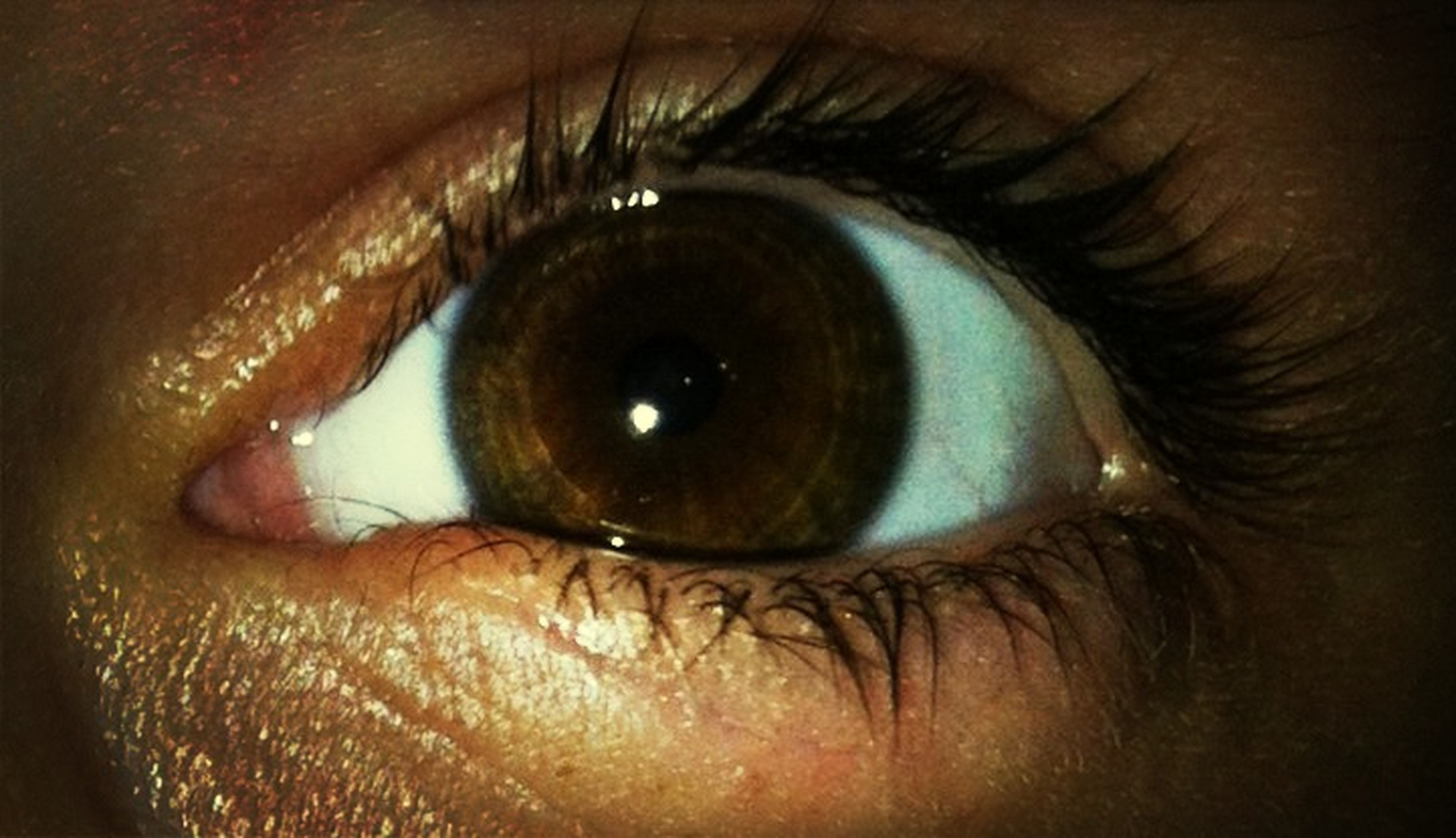 human eye, close-up, part of, eyelash, eyesight, sensory perception, human skin, person, unrecognizable person, iris - eye, lifestyles, cropped, extreme close-up, eyeball, full frame, indoors